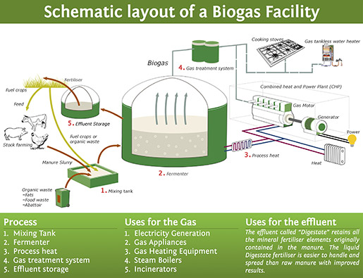 Botala Energy Solutions Cheap Electricity From Agricultural Waste Agri4africa