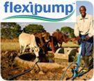 flexipump-ad