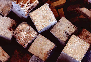 Wood Blocks From Forestry