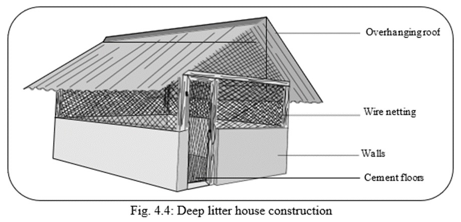 Small-Scale Poultry farming house