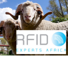 RFID Experts Africa